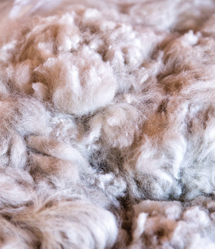 Sheep to Sweater | State College Magazine